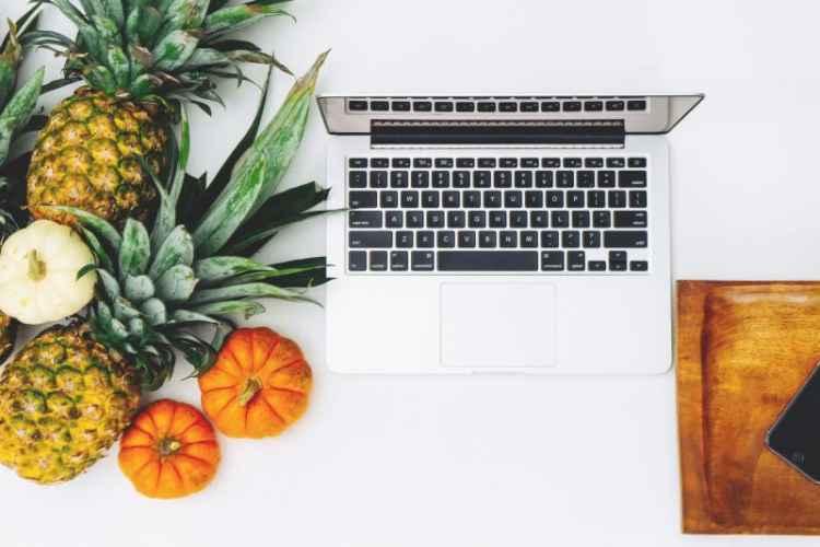 Despre dezvoltarea web